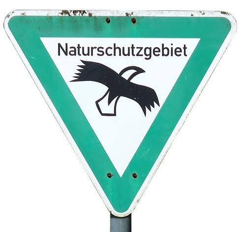 Naturschutz, Dümmer, Dümmerniederung, Vogelschutzgebiet, Vogelschutz, Feuchtbiotop, Feuchtwiesen, Landschaftsschutz,